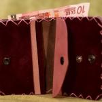 Interior de la cartera